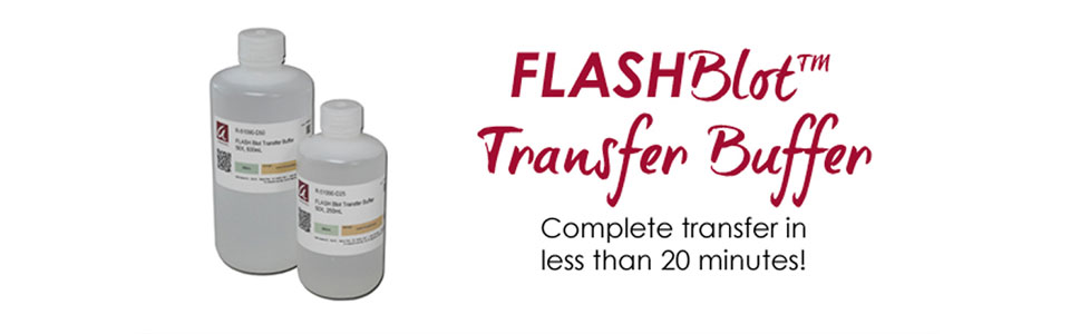 FLASHBlot Transfer Buffer