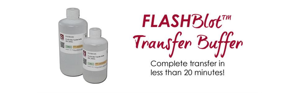 FLASHBlot Transfer Buffer