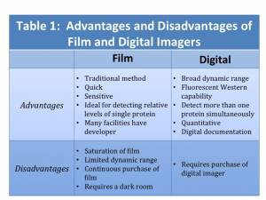 digital-imagers