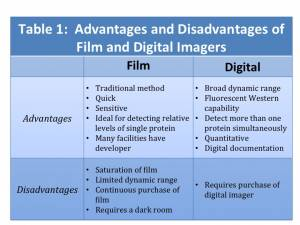 advantages disadvantages of film advertising The benefits of watching movies are immense it is the movies which inspire,  entertain and teach us while we deal with the  advertisement.